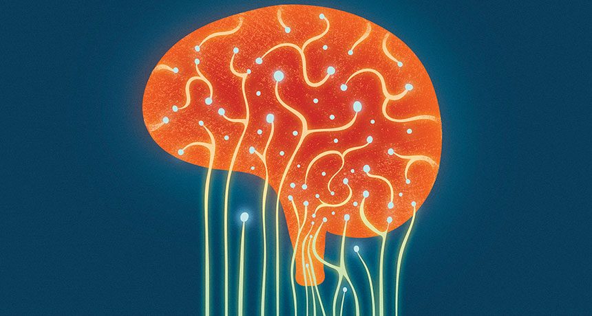 Microbes can play games with the mind | Science News