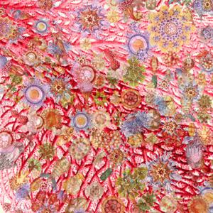 Newfound Bacteria Expand Tree Of Life | Quanta Magazine