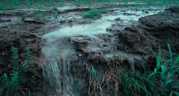 Fertilizer applied to fields today will pollute water for decades | Waterloo Stories